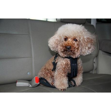Omtalade Bilbeltesele | Sikkerhet, komfort for hunden | HAMRON | Jula MK-03